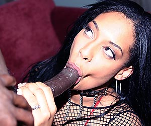 Jazmine Cashmere sucking on a big black cock while masturbating